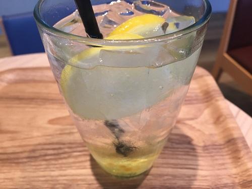 レモネード飲みながらブログ書いてます!